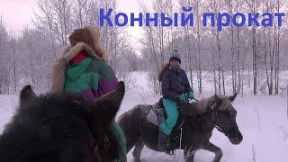 Конный прокат. Советы.(Советы тем, кто собрался покататься на лошади в конном прокате., 2017-01-04T06:00:02.000Z)