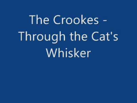 The Crookes - Through the Cat's Whisker (Better Sound Quality)