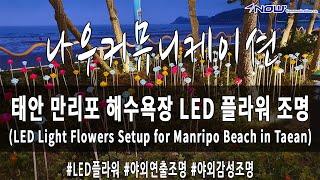 나우커뮤니케이션 태안 만리포해수욕장 LED 플라워 조명…