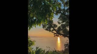 해질녘 외딴섬 매미와 파도 소리 ASMR | 자월도 자…