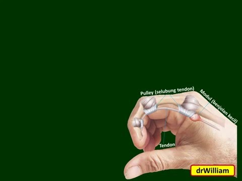 5 tips menghilangkan nyeri otot Video ini kang abay buat khusus untuk - Kalian yang sering berkendar.