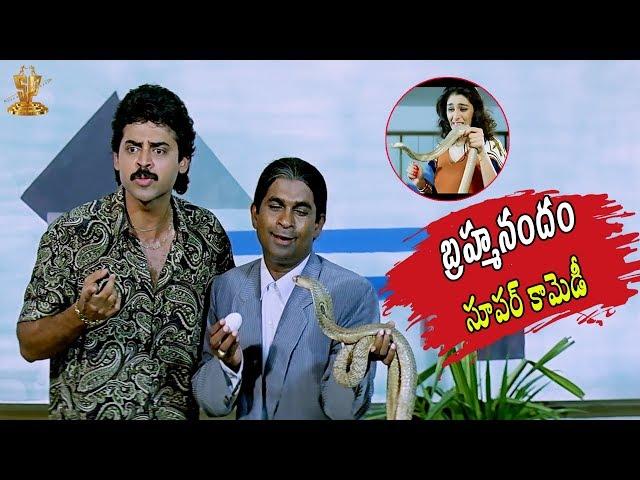 Venkatesh And Brahmanandam Back To Back Comedy Scenes |Cooli No1 Telugu Movie HD |Suresh Productions