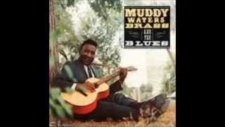 Muddy Waters / Brass And The Blues / Sweet Little Angel