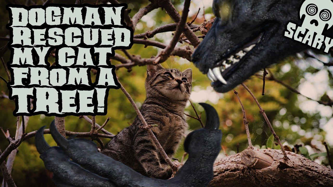 Dogman Rescued My Cat: Three New Dogman Stories