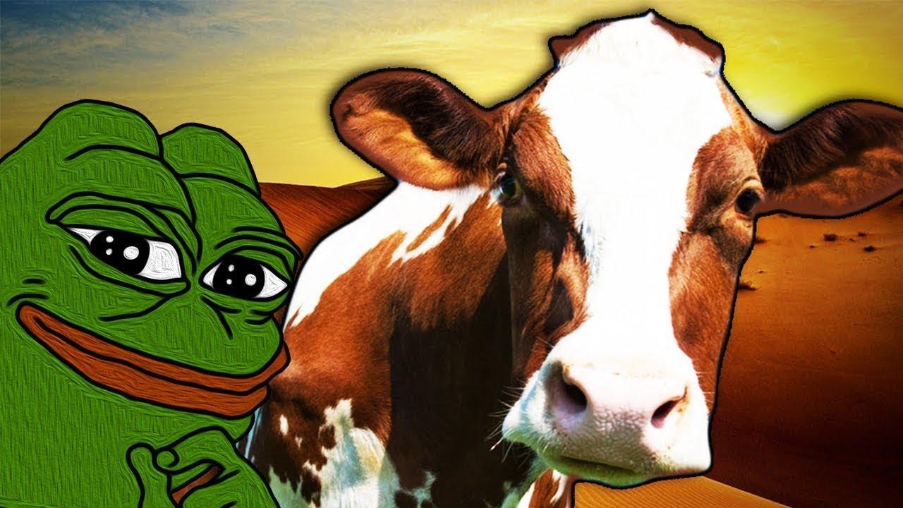 Der Staat verfolgt Kühe und einen Frosch, ist aber machtlos gegen MORD & TERROR