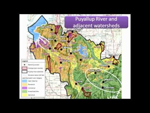 Urban Watersheds in the Puget Sound Region