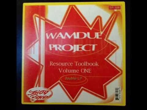 Wamdue Project - In The Back Of Your Mind