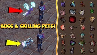 *SO MANY COOL PETS!* : All Bossing/Skilling Pets On Ataraxia (Full Guide) + $100 GIVEAWAY [RSPS]