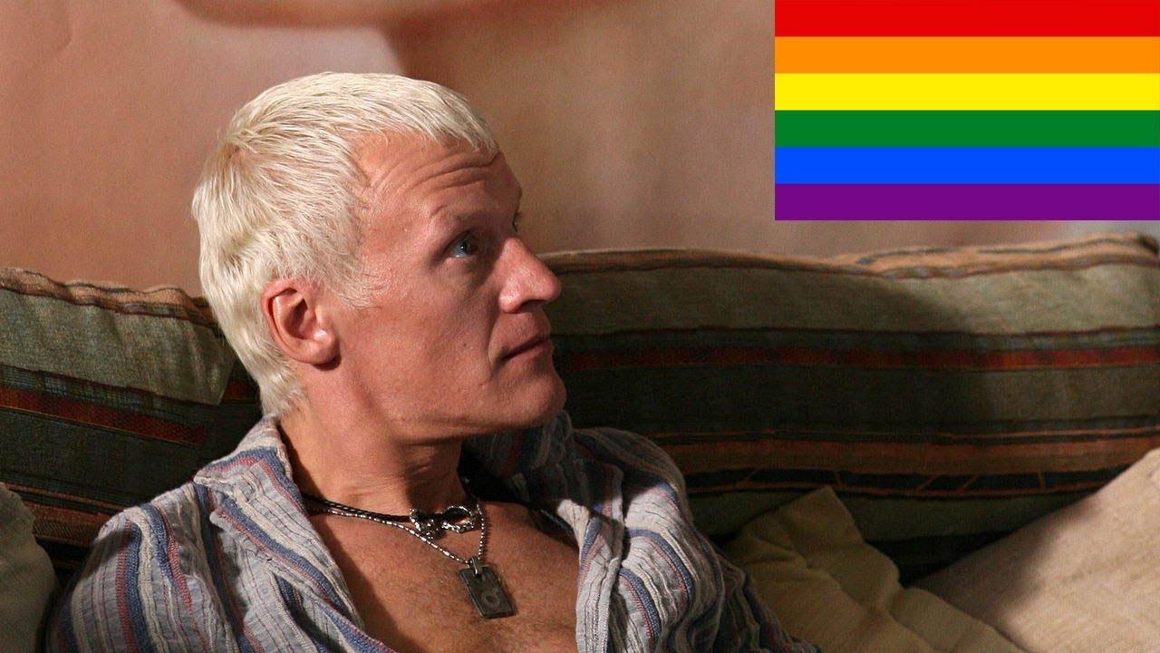 Манерный гей видео