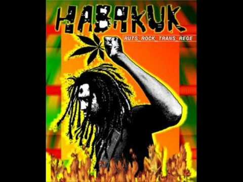 habakuk sunny lion