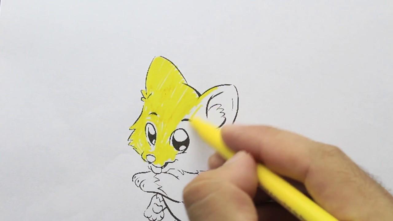 Kedi Boyama Youtube