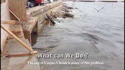 Corpus Christi Storm Water continues to dump into Bay - May 2013