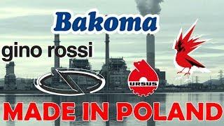 10 POLSKICH FIRM PRODUKUJĄCYCH W POLSCE