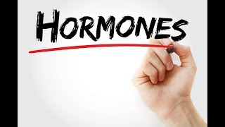 Role of Estrogen and Progesterone Hormone During Pregnancy
