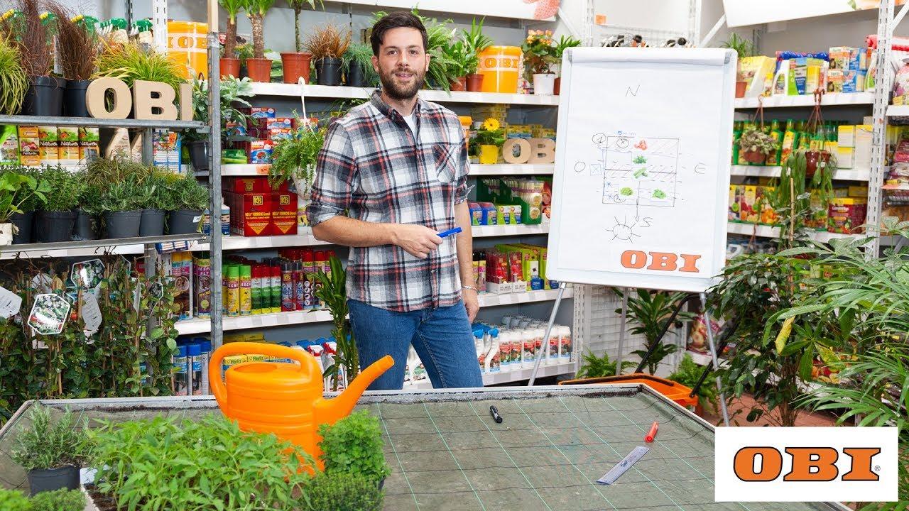 Come progettare il tuo orto obi italia