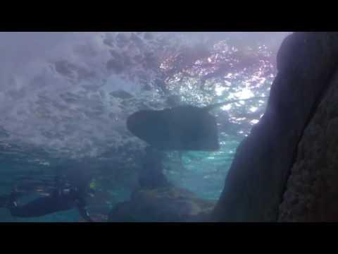 Fun times at Denver Aquarium(19)