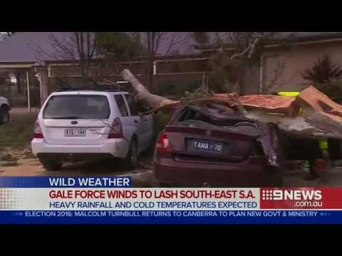 Gale force winds causing damage across South Australia   Daily Mail Online