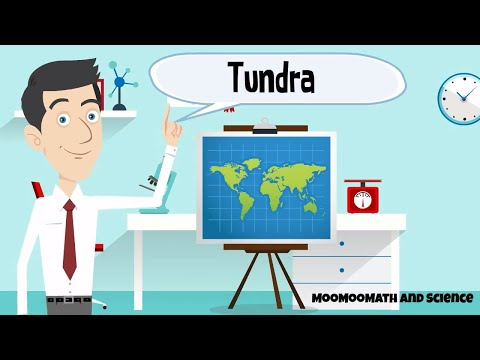 Artic and Alpine Tundra-Tundra information