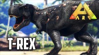 Hasim pripitomio T-REXA!!! 😱 [Hasim & Dino] #8
