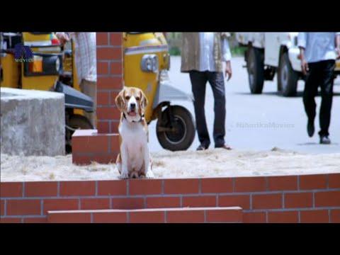 Tommy Telugu Movie Song Trailer || Aakasam Song || Rajendra Prasad, Chakri
