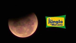 #EclipseLunar 5 horas editadas en 2 minutos
