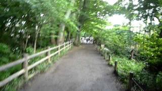 東京都小平市の玉川上水。通称「哲学者の道」