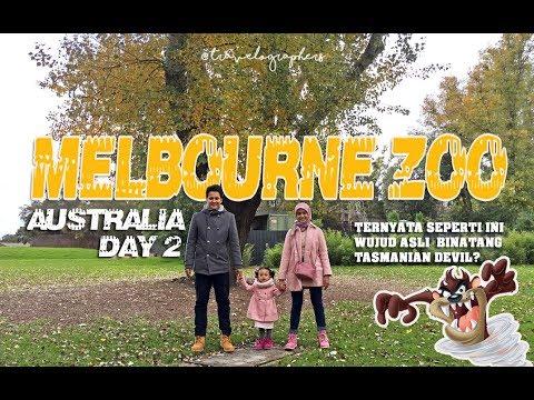 Wisata Keluarga Ke Kebun Binatang Melbourne Zoo - Day 2   Australia #2