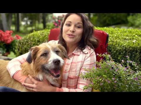 Blue Buffalo Dog Food Commercial