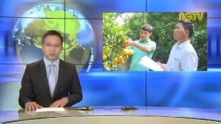 Xây dựng chuỗi liên kết sản xuất - tiêu thụ cây ăn quả