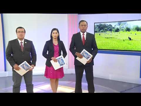 Insurance At Pautang, Inihahanda Na Ng Department Of Agriculture