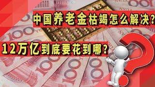 中国12万亿预算要花到哪?养老金枯竭怎么解决?