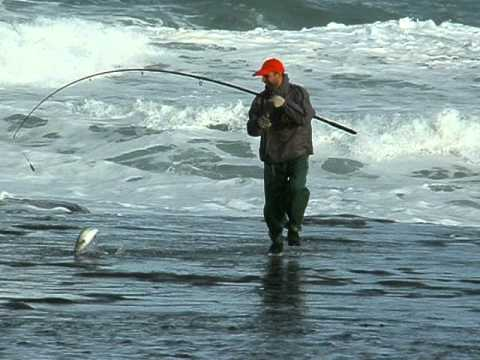 New Zealand Rock Fishing Muriwai Beach