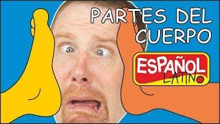Partes del cuerpo para niños | Cuentos Infantiles para dormir |Aprender con Steve and Maggie Español