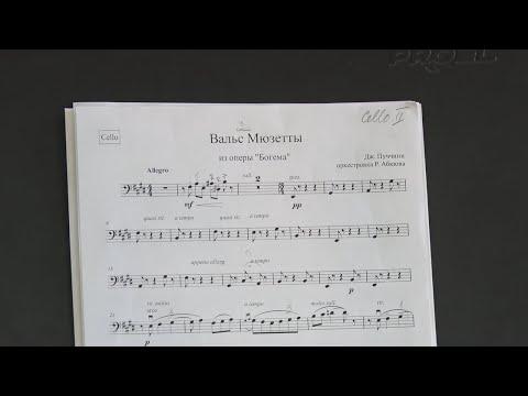 Концерт оперной певицы Александры Черненко и Туапсинского камерного оркестра