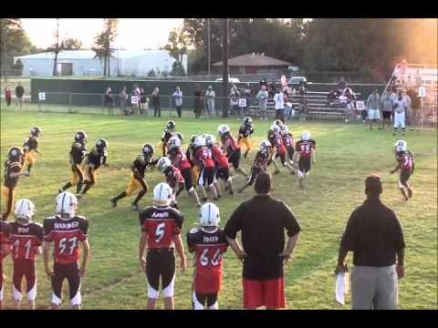 2010   Broncos  vs  Steelers   DVD