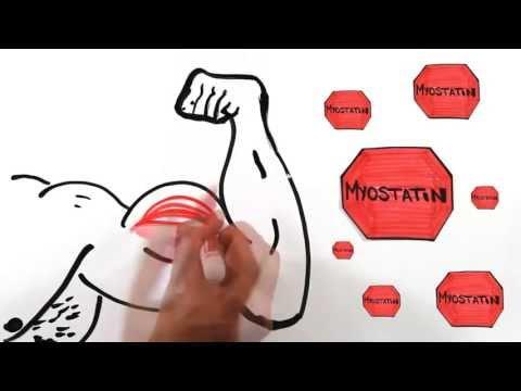 Как быстро накачать мышцы дома. Видео