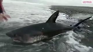 Приколы на Рыбалке Интересные случаи HotFun
