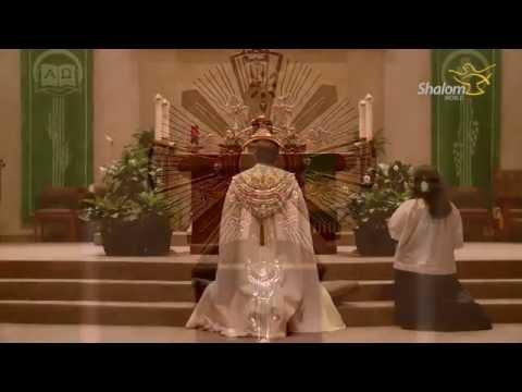 Eucharistic Adoration: St. Stephen Catholic Church