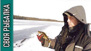 Рыбалка по окуню на озере в Талдомском районе