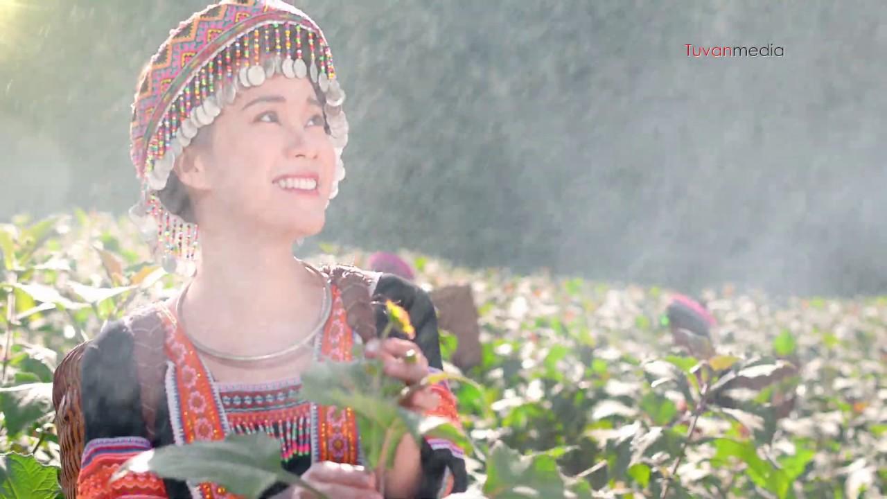 Phim quảng cáo TVC Catalia của công ty Long Hải do Tuvanmedia sản xuất