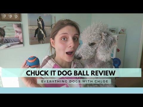 CHUCK IT BALL REVIEW - DOG BALL
