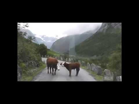 Noorwegen zuid west fjorden route vakantie