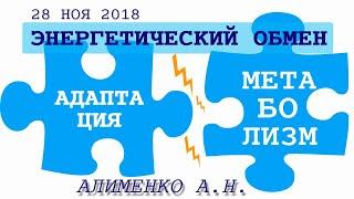 Энергетический обмен между адаптационным и метаболическими механизмами. Алименко А.Н. (28.11.2018)
