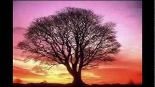 Aynur Dogan- Hejira Çiya (fig tree of the mountain)