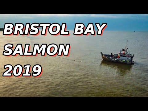 Salmon Fishing Bristol Bay Alaska