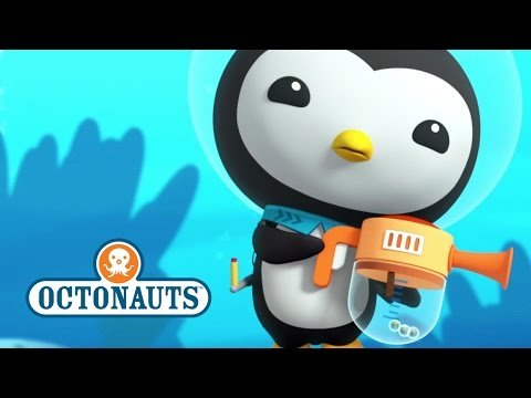 meet the crew octonauts creature