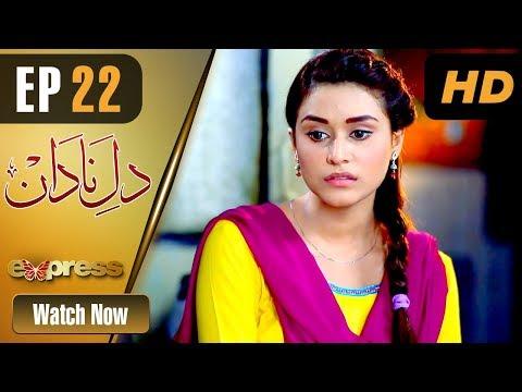 Dil E Nadaan - Episode 22 - Express Entertainment Drama