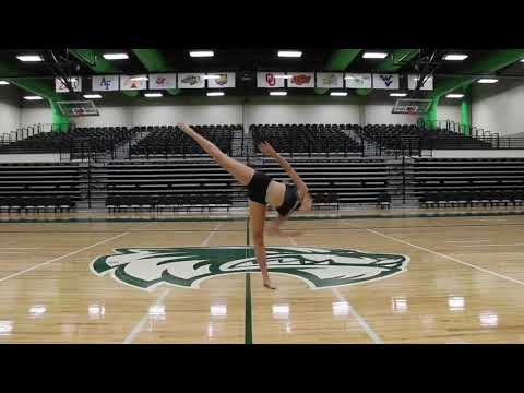 Introducing the 2018-2019 Utah Valley University Dance Team