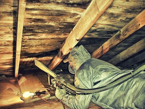Mold Remediation With Dry Ice Blasting