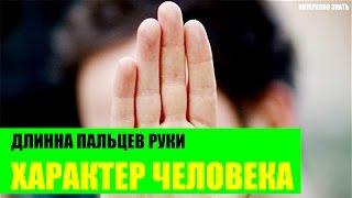 Длина пальцев руки и характер человека